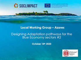 Online Regional Workshop: Co-developing sector adaptation pathways in Azores